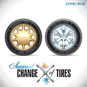 Tire Change Winter and Summer Wheels for the Car