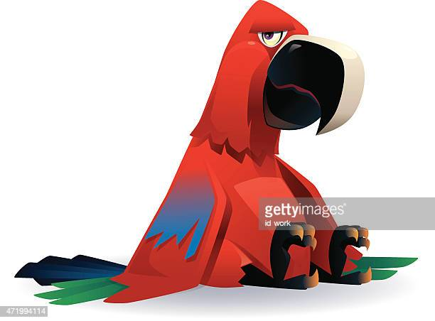 tired parrot - parrot stock illustrations, clip art, cartoons, & icons