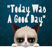 Today was a good day, card with cute grumpy cat