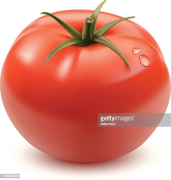 tomato - tomato stock illustrations