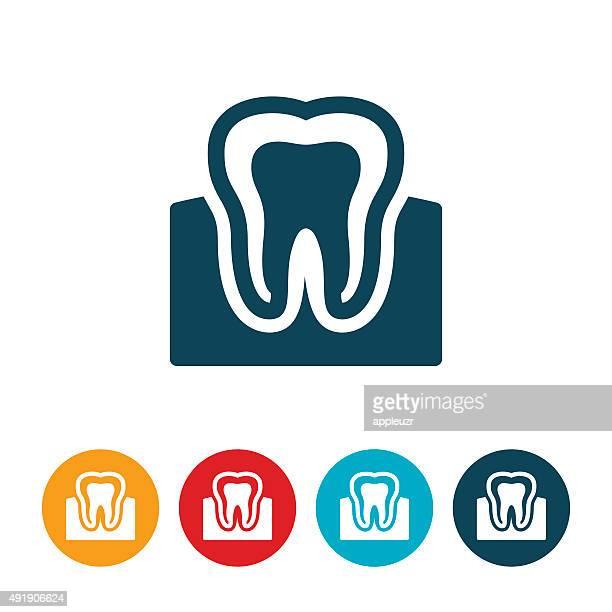 ilustraciones, imágenes clip art, dibujos animados e iconos de stock de dientes y encías - dientes humanos