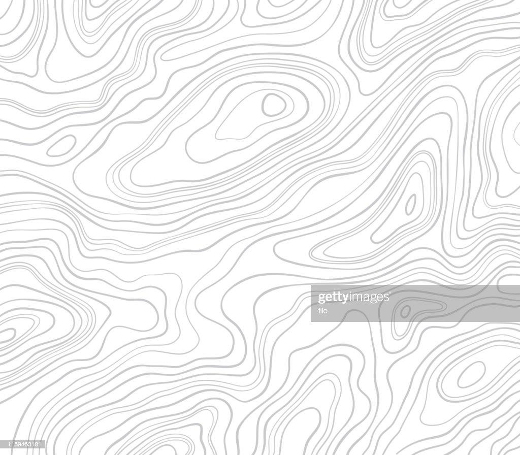 Sfondo linee topografiche : Illustrazione stock