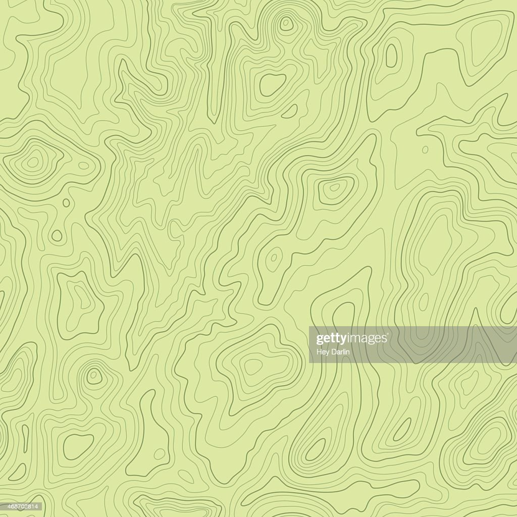 Topographical Map Seamless