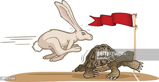 ilustraciones, imágenes clip art, dibujos animados e iconos de stock de tortuga y hare raza - tortugas