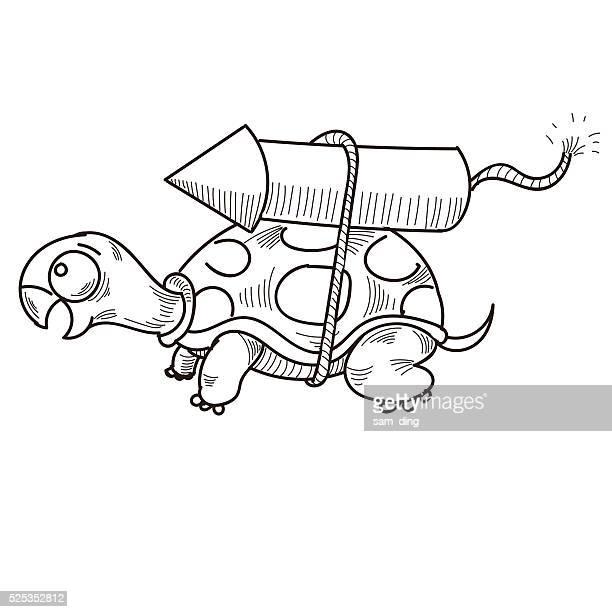 tortoise - firework explosive material stock illustrations
