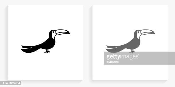 toucan bird black and white square icon - toucan stock illustrations