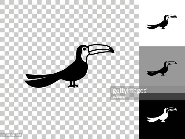 toucan bird icon on checkerboard transparent background - toucan stock illustrations
