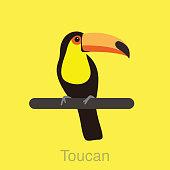 Toucan bird standing on a branch