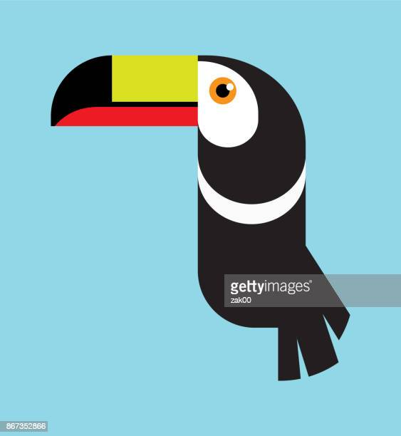 tukan vogel - nahaufnahme stock-grafiken, -clipart, -cartoons und -symbole