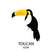 Toucan vector icon on white background. Flat design.