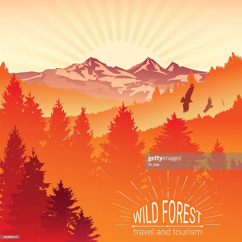 Tourism and travel. Camping. Abstract background. Wild forest.