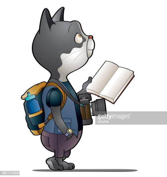 Tourist cat