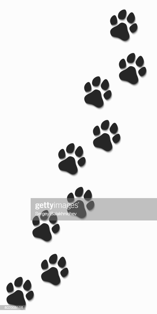 Traces of a dog in black on a white background. Soft shadow. Vector illustration. EPS 10