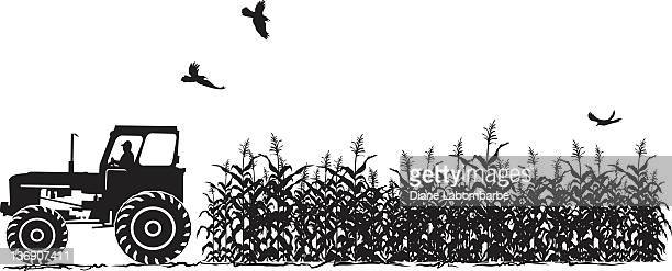 Tractor and Corn Field Agriculture Silhouette Isolated on White