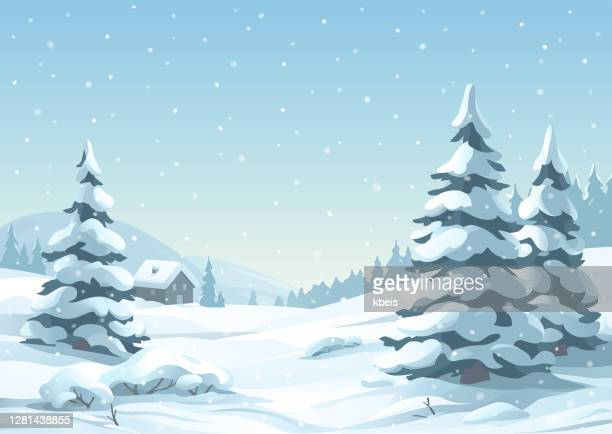 tranquil snowy winter scene - evergreen stock illustrations