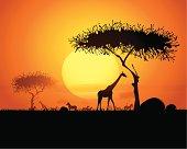 Tranquil sunset scene in africa