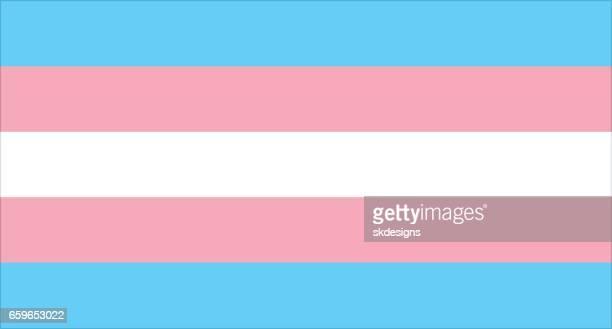 transgender pride flag - lgbtqia kultur stock-grafiken, -clipart, -cartoons und -symbole