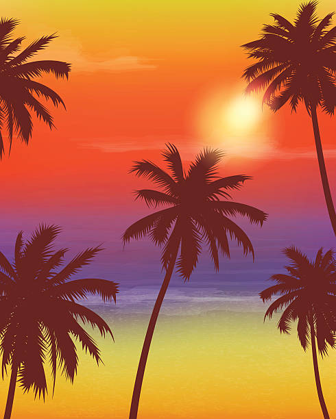 Travel Backgrounds with Palm Trees. Exotic landscape. Vector