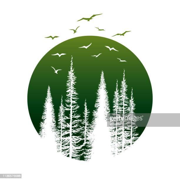 松の木や鳥と旅行バッジ