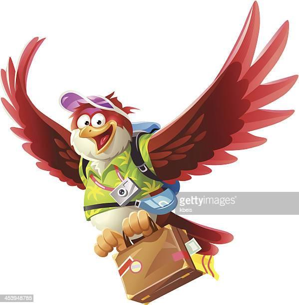Travelling Bird