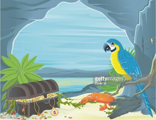 treaure island / coffre au trésor - parrot stock illustrations, clip art, cartoons, & icons