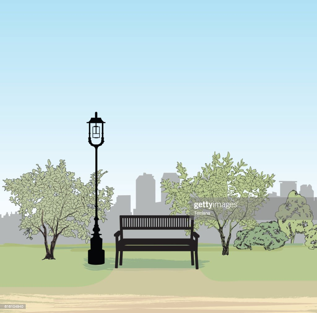 Tree and bench in park. City Garden landscape. Nature cityscape