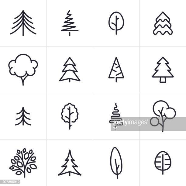 tree and evergreen icons and symbols - line art stock illustrations