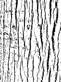 https://www.istockphoto.com/vector/tree-bark-texture-wooden-background-for-graphic-design-gm985736424-267417426