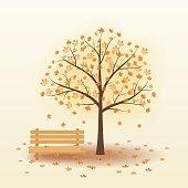 Tree, bench, park.