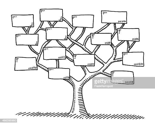 tree branches with blank signs drawing - family tree stock illustrations, clip art, cartoons, & icons