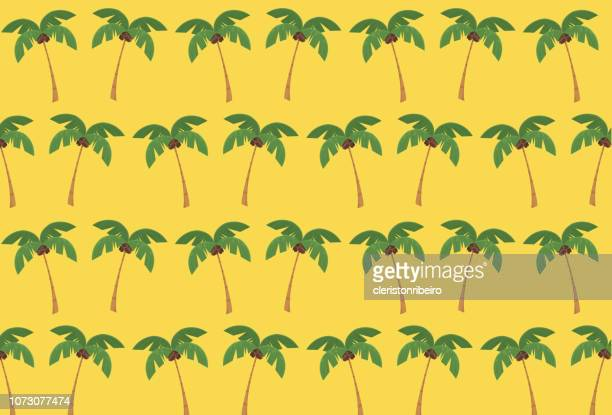 ilustrações, clipart, desenhos animados e ícones de árvore coco padrão (modelo) - cocos plant