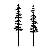 tree coniferous nature vector silhouette set isolated illustration, tribal art design templates