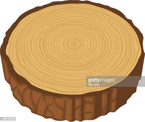 tree cross section - tree rings stock illustrations, clip art, cartoons, & icons