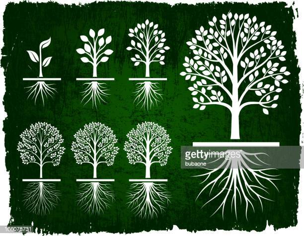 tree growing green grunge royalty free vector icon set - root stock illustrations, clip art, cartoons, & icons
