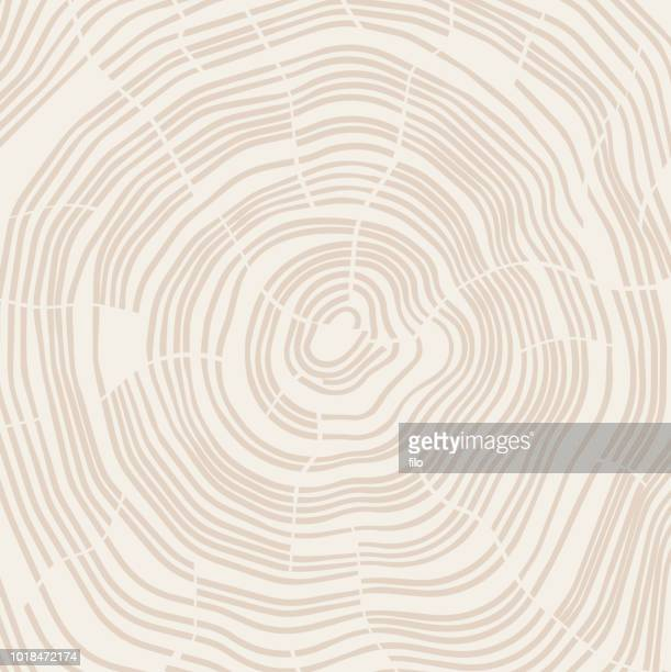 tree growth rings - tree rings stock illustrations, clip art, cartoons, & icons