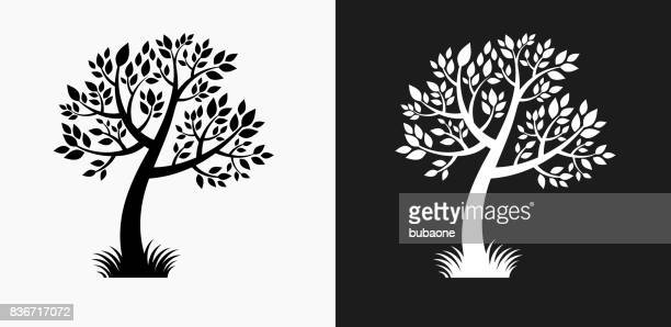tree icon on black and white vector backgrounds - {{relatedsearchurl('county fair')}} stock illustrations, clip art, cartoons, & icons