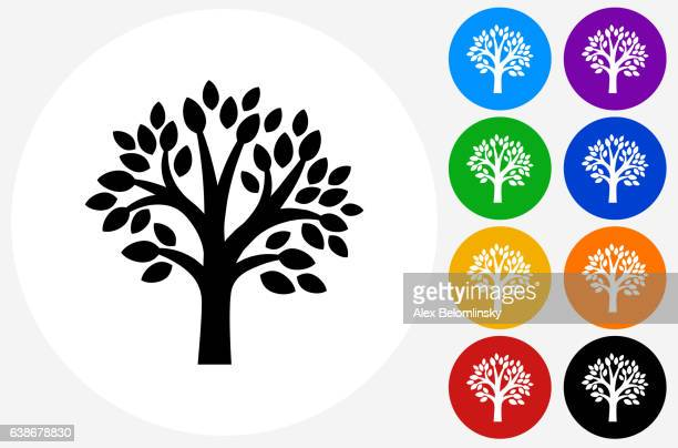 tree icon on flat color circle buttons - tree stock illustrations, clip art, cartoons, & icons