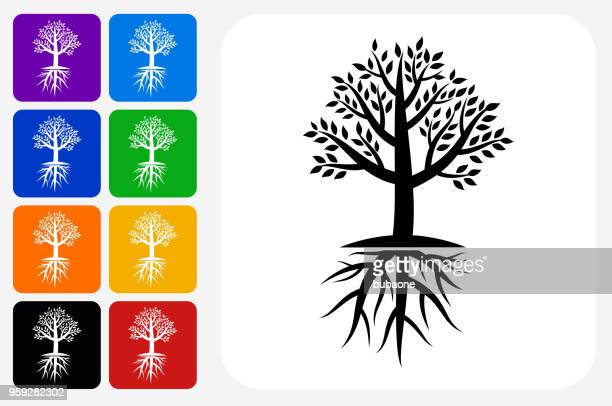 tree icon square button set - root stock illustrations, clip art, cartoons, & icons