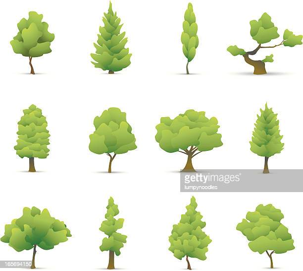 tree icons - deciduous tree stock illustrations, clip art, cartoons, & icons