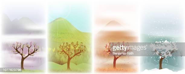 ilustraciones, imágenes clip art, dibujos animados e iconos de stock de árbol en el fondo de cuatro estaciones - las cuatro estaciones