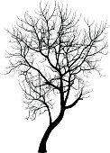 Tree in winter : Vector
