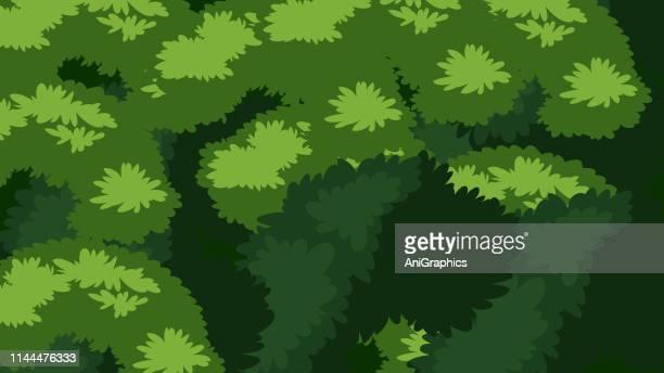tree leaves pattern - hawaiian shirt stock illustrations