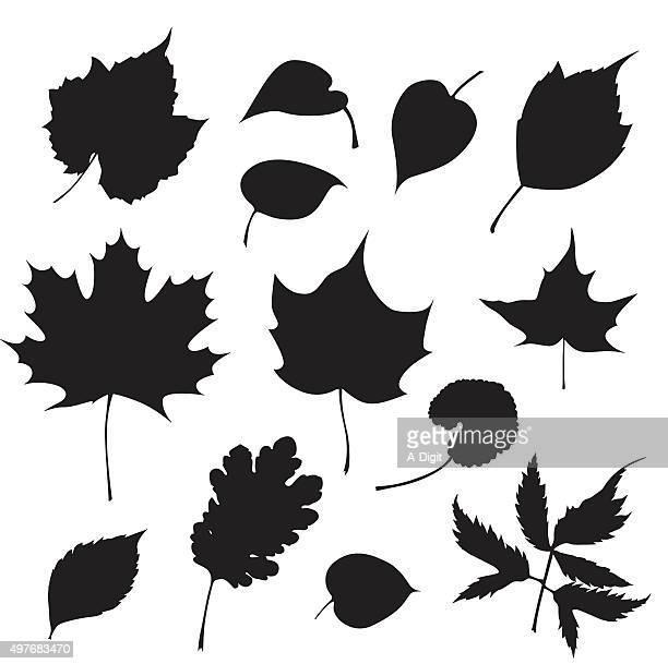 tree leaves - maple leaf stock illustrations