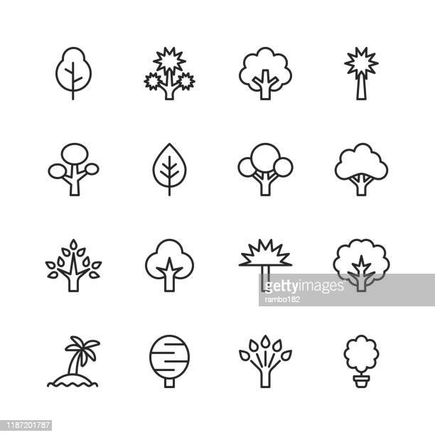tree line icons. editable stroke. pixel perfect. for mobile and web. contains such icons as tree, forest, nature, outdoors, environment, ecology. - tree stock illustrations