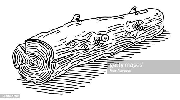 tree log drawing - log stock illustrations