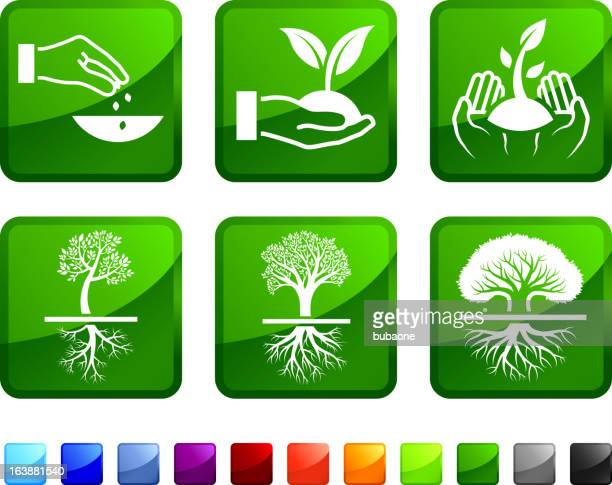 tree planting and growing royalty free vector icon set stickers - tall high stock illustrations