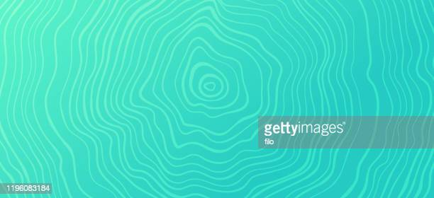 tree rings abstract pattern background - woodland stock illustrations