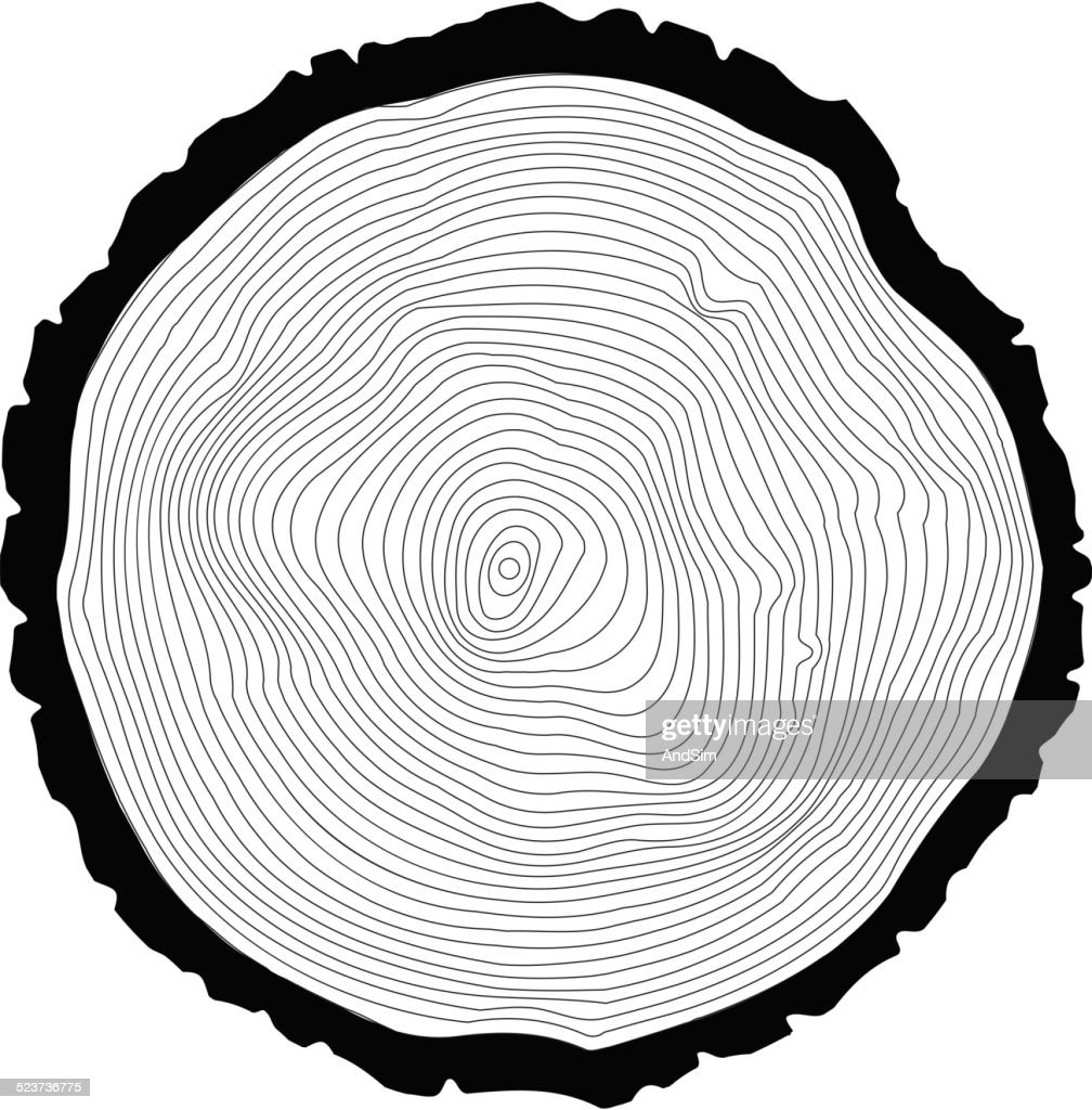 Tree rings background. Annual tree