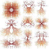 tree roots elements
