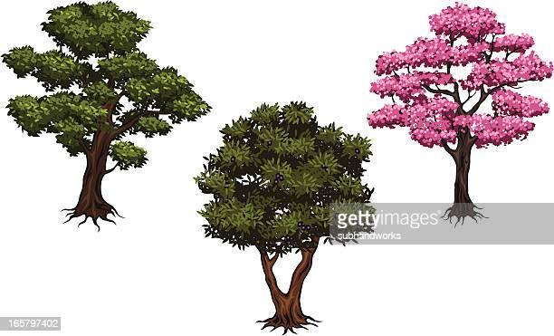 tree set - cherry tree stock illustrations, clip art, cartoons, & icons